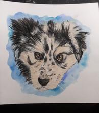 Portrait of Ruby