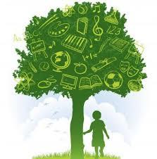Processo Escolar: Quando se Inicia?