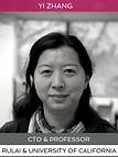 Professor Yi Zhang