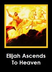 Elijah_edited.jpg