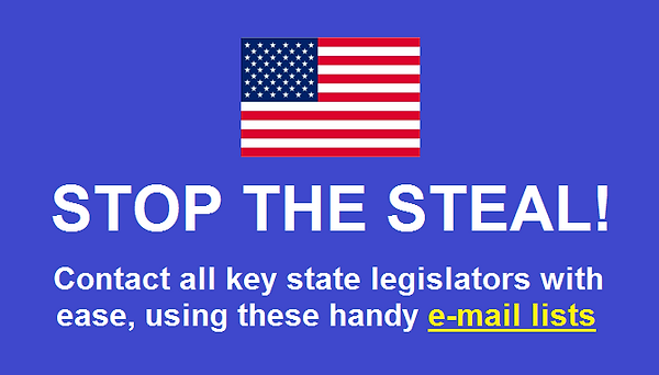 Beige Page - Stop the Steal.png