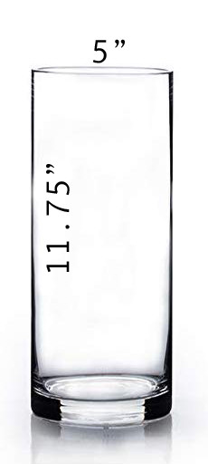 Cylinder Vase - 11.75 x 5 with Dimension