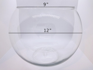 Large Fishbowl Vase with Dimensions2.jpg