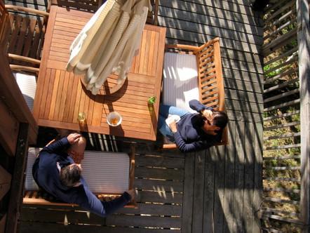 Birdseye Deck.jpg