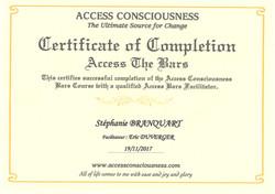 ACCESS BARS ®