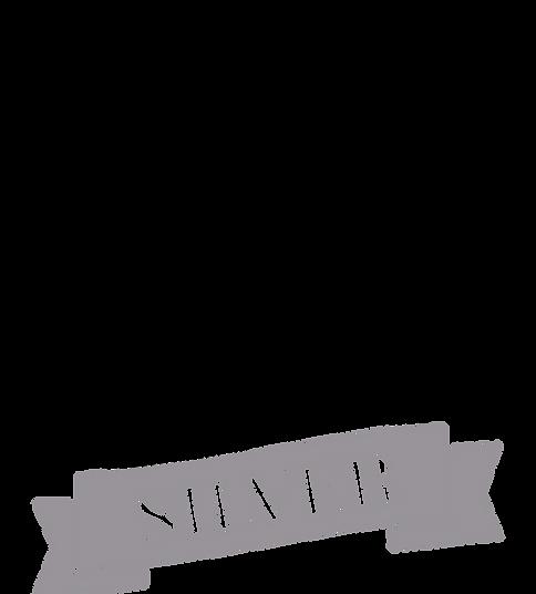 2020 Image Awards Logo - BLKGSILVER.png