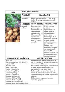 patata.jpg