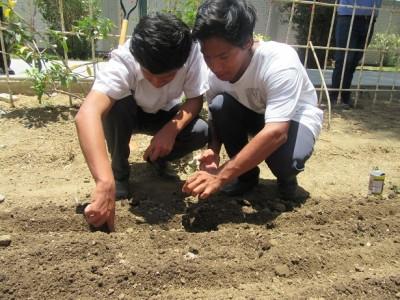 Escuelas de Talara implementan biohuertos y composteras