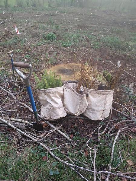 Planting Bags_edited.jpg