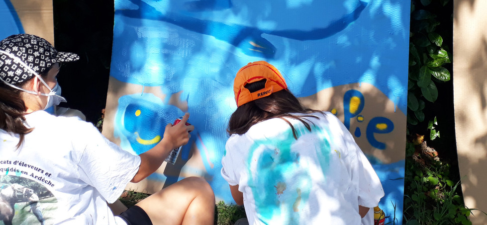 Stage de Grafffiti Art