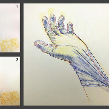 Hand and Glove Study