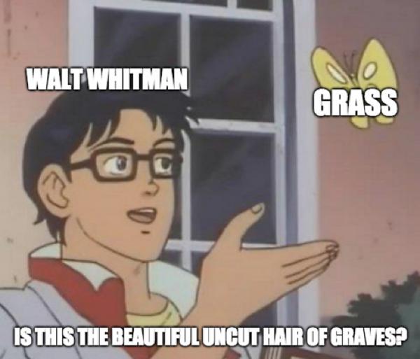 DG, Meme1.png