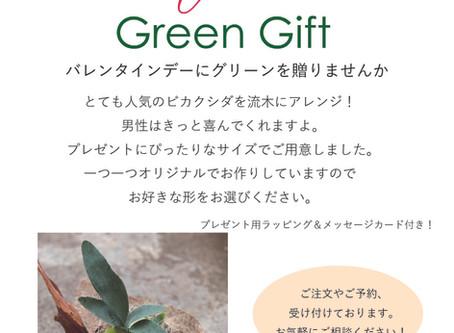 Happy Valentine Green Gift