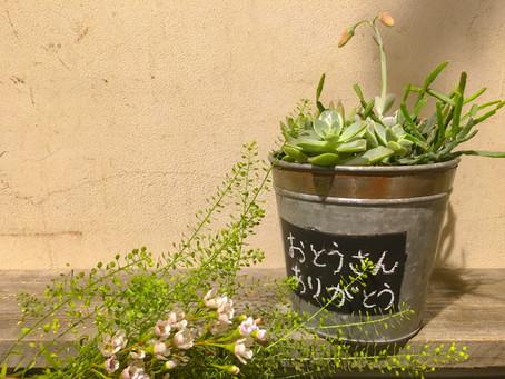 キッズスクールで父の日の寄せ植えを作りました!