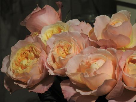 母の日にはこだわりの香りのバラを…