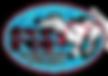 IFSS-Logo-pdf-format1.png