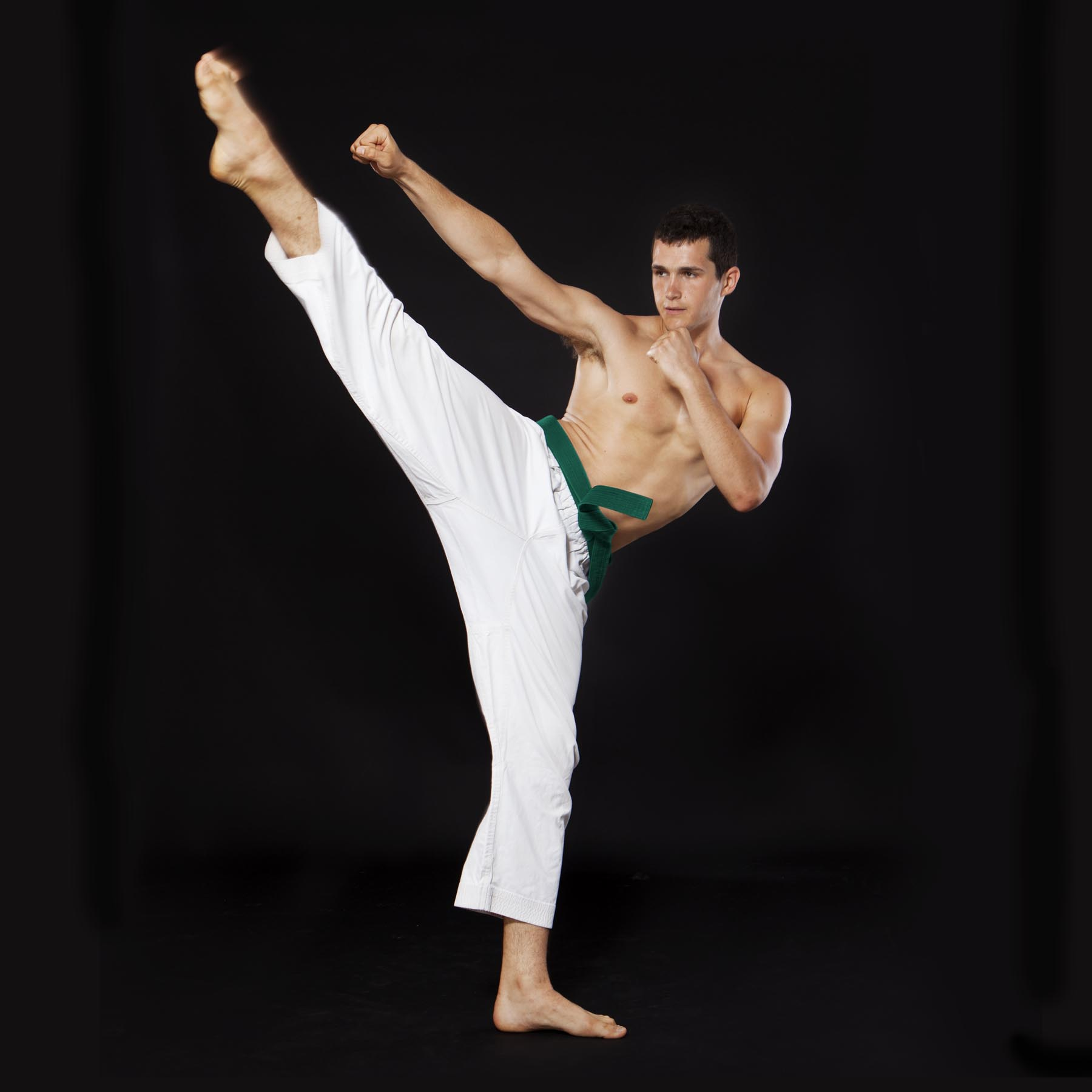 karate קמפיין פורטרטים