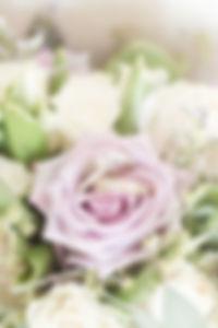 web flowers-1.jpg