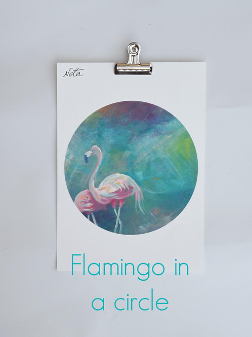 Flamingos in a Circle