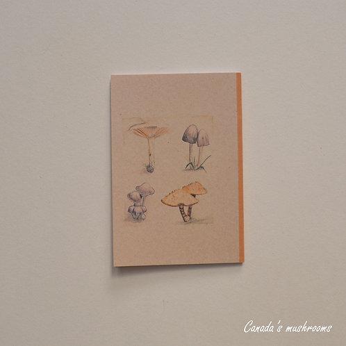 Canada's Mushrooms Notebook