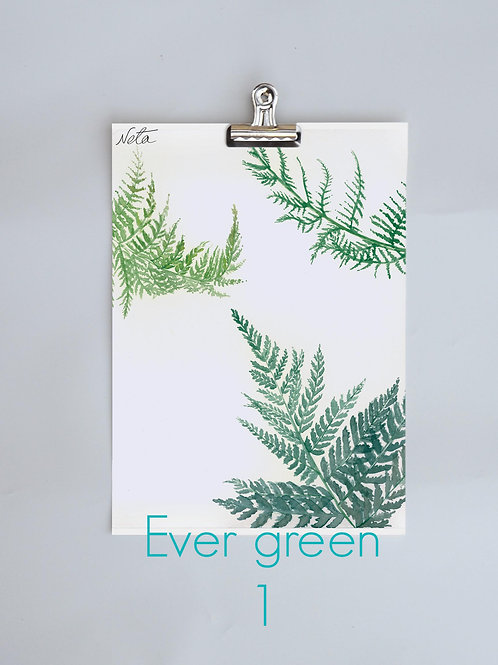 Ever Green 1