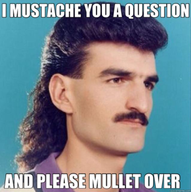 mullet question.jpg