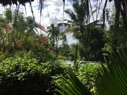 Bellevue Garden Bungalow view