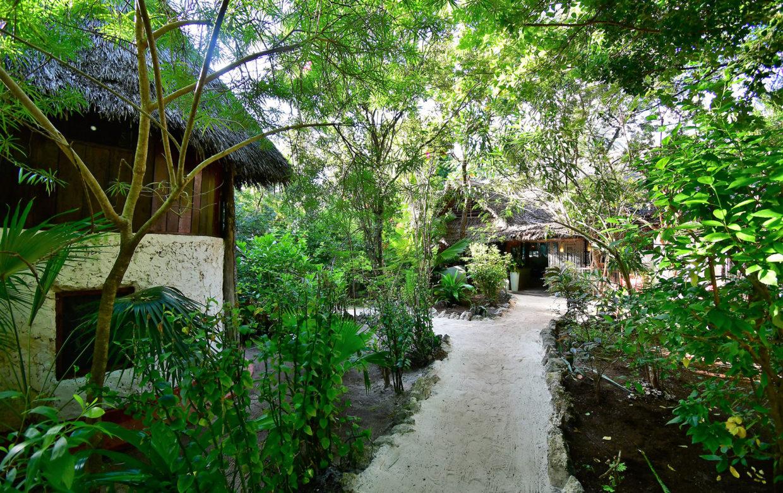Bellevue guesthouse garden