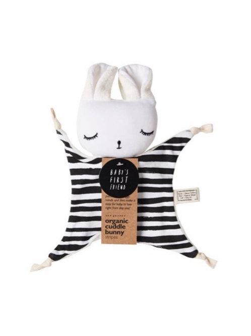 Organic Cuddle Bunny