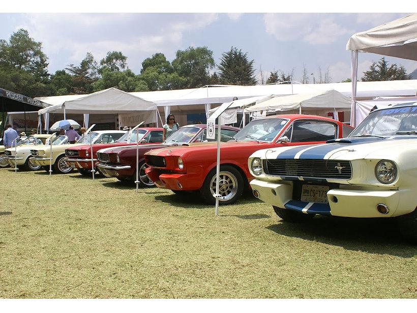 Actividades del Mustang Club México, A.C.