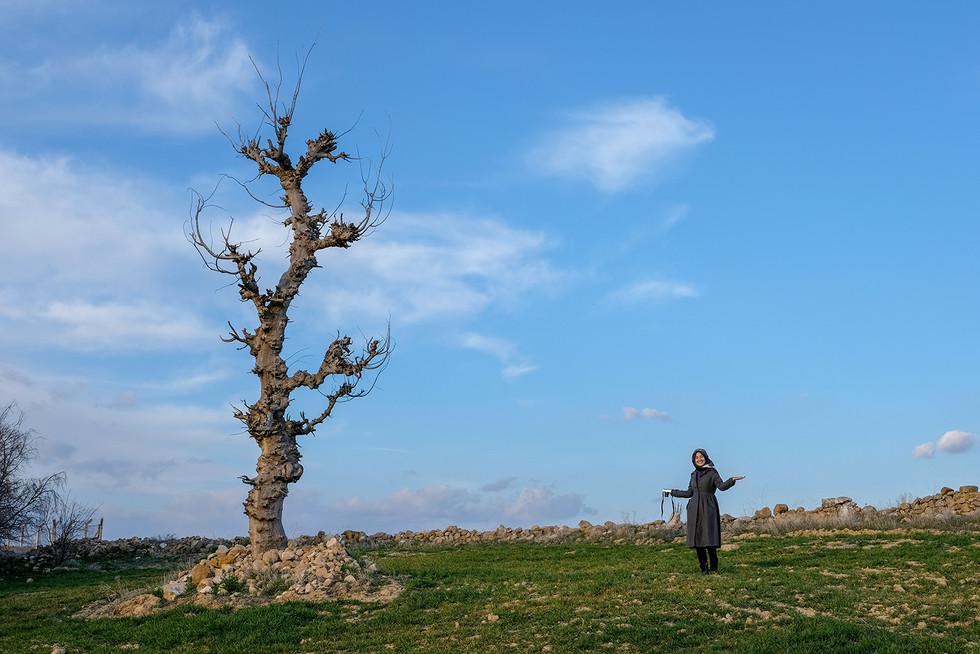 Neslihan Kalender ile bir ağaç portresi çektik.
