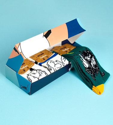 Sporty Gift Box