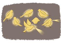 Proton Bird Character Design