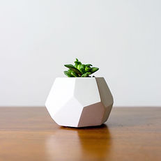 planter_1080x.jpeg