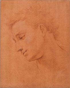 GIROLAMO MACCHIETTI (1535–1592) ⎜Head of a Young Man in Profile to the Left ⎜Private collection, USA