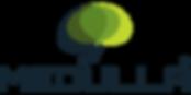 medulla-logo-500x250.png