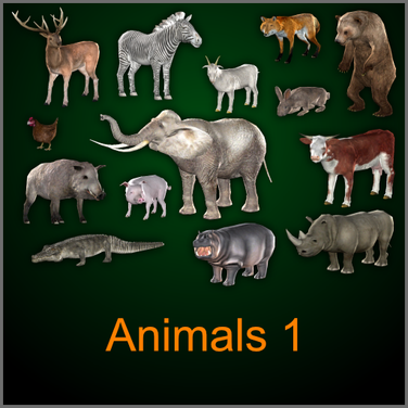 Animals 1.png