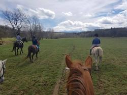 Riding Around the Farm