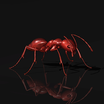ant prop preview.png
