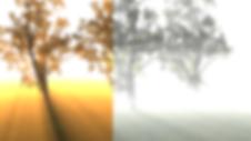 fog 5.png