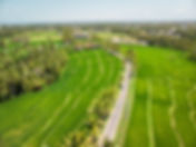 drone1.jpeg