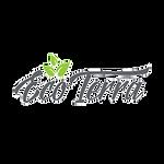 clientLogos_EcoTerra-logo.png