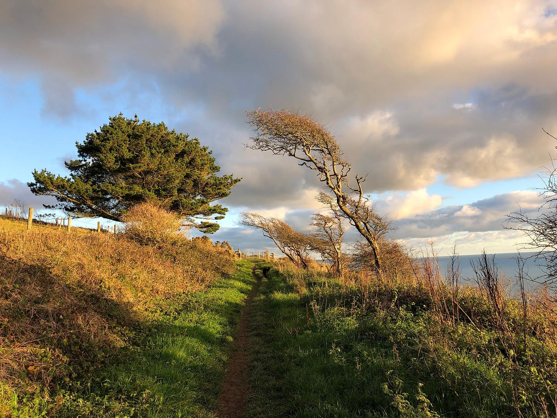 South West Coast Path 1