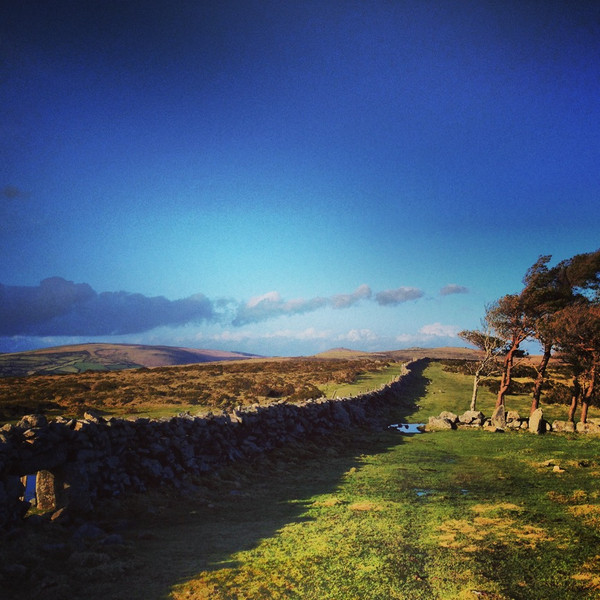 Buckland Beacon Dartmoor