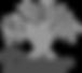 dabur-logo_edited.png