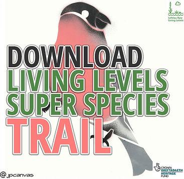 LivingLevels-Map-cover2.jpg