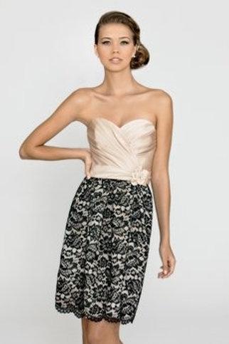 Fabulous Cream and Lace Dress