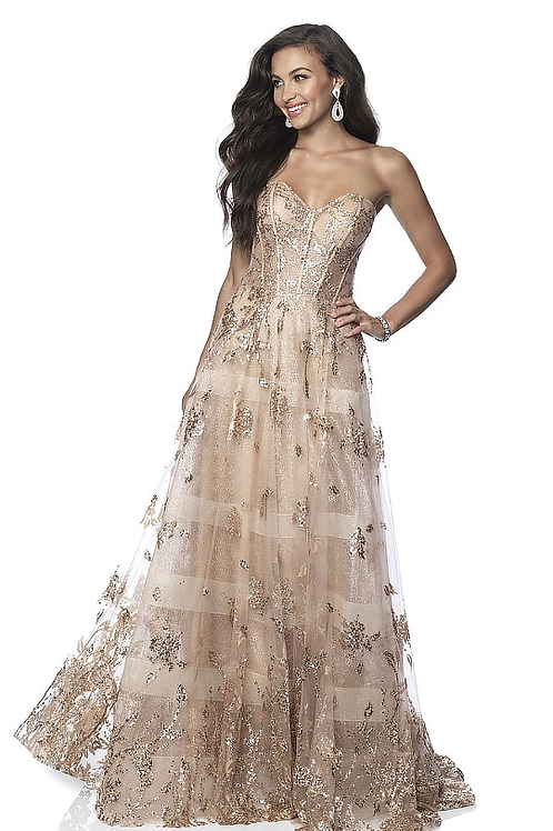Parisian Beauty Lace Sheer Gown
