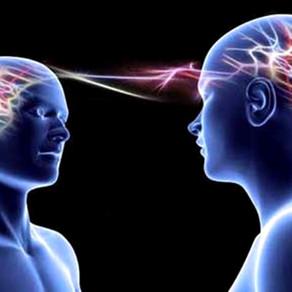 La mente colectiva