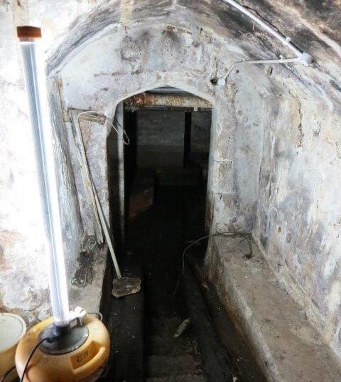 The Cellar prior to renovation.